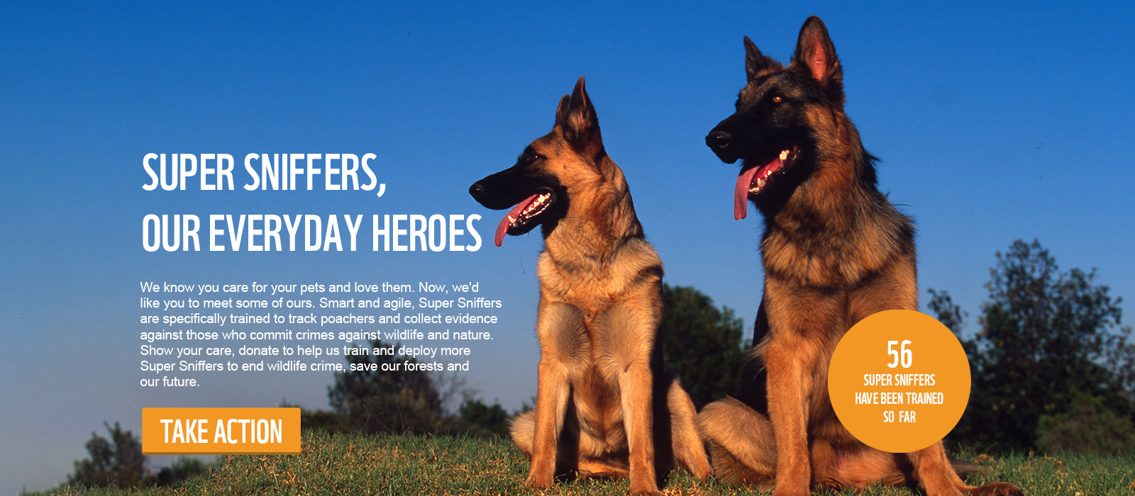 SUPER SNIFFERS OUR EVERYDAY HEROES - We know you care for your pets and love them. Now, we'd like you to meet some of ours. Smart and agile, Super Sniffers are specifically trained to track poachers and collect evidence against those who commit crimes against wildlife and nature. Show your care, donate to help us train and deploy more Super Sniffers to end wildlife crime, save our forests and our future.
