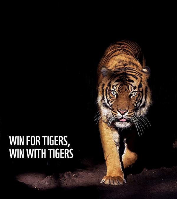 Pledge to Protect Tigers - WWF India
